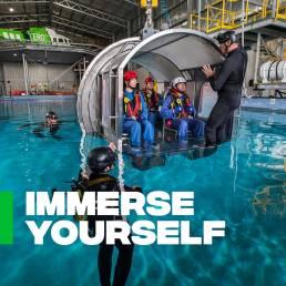 Immerse Yourself - people experiencing underwater submersion