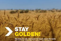 Stay Golden agriculture advert